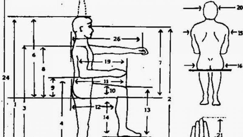 antropometri.jpg