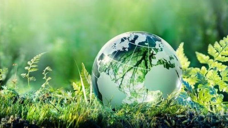 environment-healthy.jpg