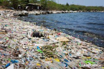 plastic-in-ocean-pasific.jpg
